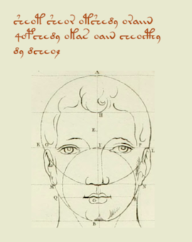 Strange writing and a diagram of a head