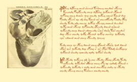 Diagram of a heart, and yet more strange writing